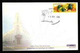FRUITS GRAVE VINES APPLE ORANGE AGUACATE PALTA URUGUAY EXPORTATIONS 2009 FDC COVER - Landwirtschaft
