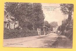 """Carte Postale En Noir Et Blanc """" L'avenue Du Bois """" à PHALEMPIN - France"""