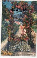 DEPT 06 : édit. Rostan & Munier N° 907 : Jardin Fleuri - Non Classés