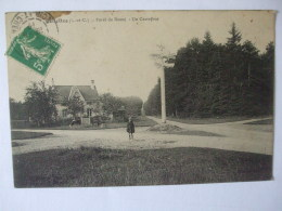 09092018 - 41 - CELLETTES  -  FORET DE RUSSY - UN CARREFOUR - Autres Communes