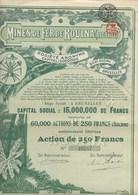 MINES DE FER DE ROUINA -ALGERIE- ACTION ILLUSTREE DE 250 FRS -ANNEE 1920 - Mines