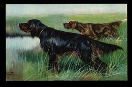 B6209 CANI / DOG - ILLUSTRATED POSTCARD - Cani