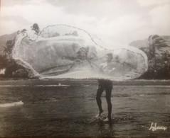 PHOTO Collection  A.SYLVAIN 40935 - PECHEUR à L'EPERVIER Tahiti  1960 Polynésie  -GRAND FORMAT 50 X 40 Cms - Reproductions