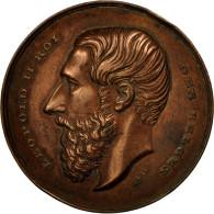 Belgique, Médaille, Leopold II, Compagnie D'Assurances Contre L'Incendie, 1868 - Autres