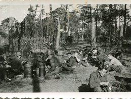 PHoto De Soldats En Forêt à Speyer Spire Ou Proche Repas Grands Bidons D'autres Plus Loin Debout - War, Military