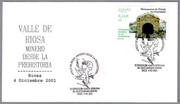 Valle De RIOSA. MINERO DESDE LA PREHISTORIA - Mining From Prehistory. Riosa, Asturias, 2001 - Preistoria