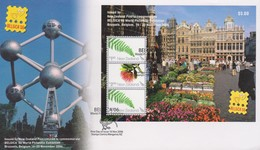 New Zealand 2006 Belgica Miniature Sheet FDC - FDC