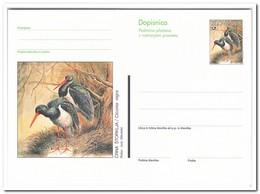 Slovenië, Postcard, Birds - Slovenië