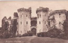 RAGLAN CASTLE - Monmouthshire