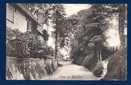 Buriton.( Hampshire); View At Buriton . Une Rue Du Village. 1909 - Autres