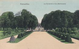 (78) - VERSAILLES - La Pyramide Et Les Marmossets - Versailles (Château)