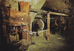 Commune De Louresse-Rochemenier - Pressoir à Huile Du XVIIème Siècle Dans Les Caves Troglodytes - France