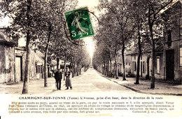 89.  Yonne :  Champigny  Sur Yonne : L ' Avenue , Prise D ' En Haut . - Champigny