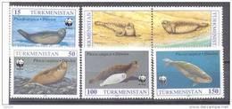 1993.Turkmenistan,  WWF, Caspian Seal, 6v, Mint/** - Turkmenistán
