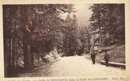 Vallée De L'Aude La Route De MONTLOUIS  Dans La Foret Du CARCANET  RV - France