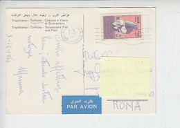 LIBIA  1964 - Yvert  239 - Emancipazione Donna - Cartolina Per Italia - Libia