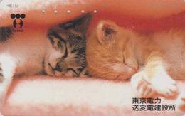 Télécarte Japon / 110-101176 - ANIMAL - CHAT Chats TEPCO - CAT Japan Phonecard - KATZE - GATTO -  4715 - Gatos