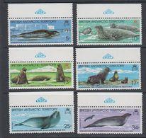 British Antarctic Territory (BAT) 1983 Antarctic Seal Conservation 6v(WSP In Margin) ** Mnh (40560B) - Ongebruikt