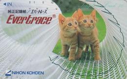 Télécarte Japon / 110-81772 - ANIMAL - CHAT Chats ** EVERTRACE ** CAT Japan Phonecard - KATZE - KAT - 4719 - Katten