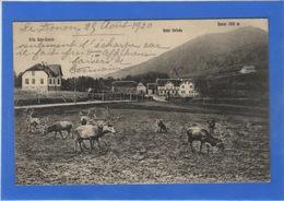 67 BAS RHIN - DONON, Villa Sans-Soucis Et Hôtel Velleda - Unclassified
