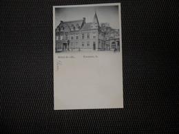 Enghien   :   Hôtel De Ville - Edingen
