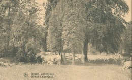 Bierbeek; Groot Lovenjoul / Grand Lovenjoul (Le Parc) - Non Voyagé. (Nels) - Bierbeek