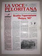 6857FM- LA VOCE PELORITANA NEWSPAPER, 1995, ITALY - Altri