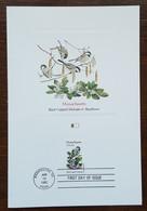 Etats-Unis - CM 1982 - YT N°1402 - Faune Et Flore Officielles Des Etats De L'Union / Massachusetts - Maximumkarten (MC)