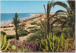 COSTA CANARIA, Playa Del Ingles, Las Palmas De Gran Canaria, Spain, Used Postcard [21845] - Gran Canaria