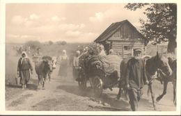 Militaria - Guerre 1939-45 - Russie - Sowiet-Union - Flüchtlinge Suchen Eine Heimat - Guerre 1939-45