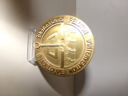 Medaille En Bronze Peloton D Intervention Gendarmerie Guadeloupe Dia 7 Cm 107 Gr Avec Sa Boite - Police