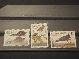 BELIZE - 1983 UCCELLI 3 VALORI - NUOVI(++) - Belize (1973-...)
