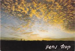 ISRAEL. PHALPHOT. UNUSED. CIRCA 1990's- BLEUP - Israël
