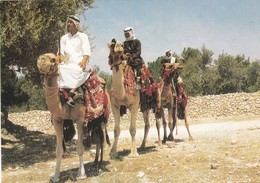 TRAVELLERS ON THEIR CAMELS. UNUSED. CIRCA 1990's- BLEUP - Israël