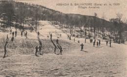 CARTOLINA VIAGGIATA 1937 ABBADIA S.SALVATORE SIENA (Z1313 - Firenze