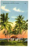 Honeymoon Hut, Sandy Cove , Bahamas, 30-40s - NVG FP - C154 - Bahamas