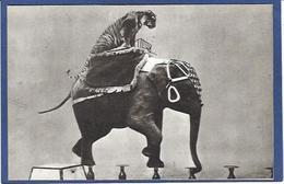 CPSM éléphant Cirque Circus Cirk Asie Non Circulé - Circus