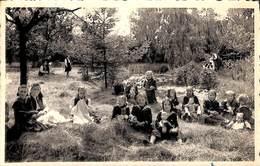 Mollem-lez-Assche - Pensionnat Des Religieuses Ursulines - Parc (animation, 1955) - Asse