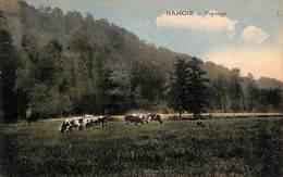 Hamoir - Paysage (animée, Colorisée, Desaix, 1924) - Hamoir