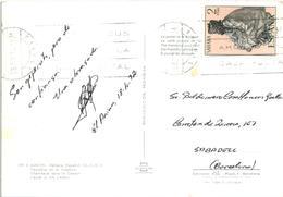 Western Sahara Occidental Español Spanish Sahara AAIUN  Camel Chameau - Posted With Stamp 1972 - Western Sahara