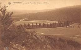 HERBEUMONT - La Route De Florenville.   Vue Prise Du Château - Herbeumont