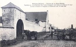 Braine-L'Alleud-Ferme De La Haie-Sainte-Animée - Braine-l'Alleud