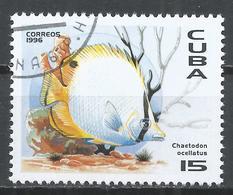 Cuba 1996. Scott #3751 (U) Fauna Of The Caribbean, Chaetodon Ocellatus, Fish * - Cuba
