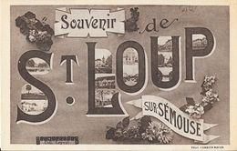 Souvenir De St Saint-Loup Sur Sémouse - Multivues - Collection Leyval - Carte Non Circulée - Souvenir De...