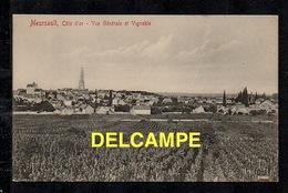 DD / 21 CÔTE D'OR / MEURSAULT / VUE GENERALE ET VIGNOBLE - Meursault