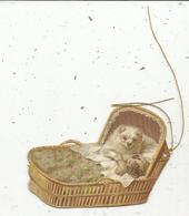 Chromos & Images , Découpi , étiquette , Chiens , Chiots Dans Un Berceau - Animals