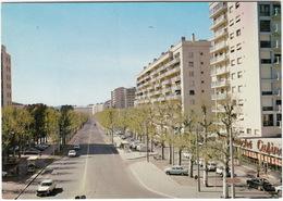 Saint-Etienne: PEUGEOT 404, 204, RENAULT DAUPHINE, FIAT 850 - 'Supermarché Casino' - Le Cours Fauriel Près Du Rond-Point - Passenger Cars