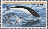 TAAF 2004 Yvert 385 Neuf ** Cote (2015) 3.00 Euro Dauphin De Péron - Terres Australes Et Antarctiques Françaises (TAAF)