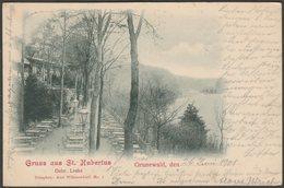 Gruss Aus St Hubertus, Grunewald, Wilmersdorf, 1901 - AGfaV AK - Wilmersdorf