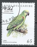Cuba 1997. Scott #3852 (U) Caribbean Bird, Amazona Ochrocephala * - Cuba